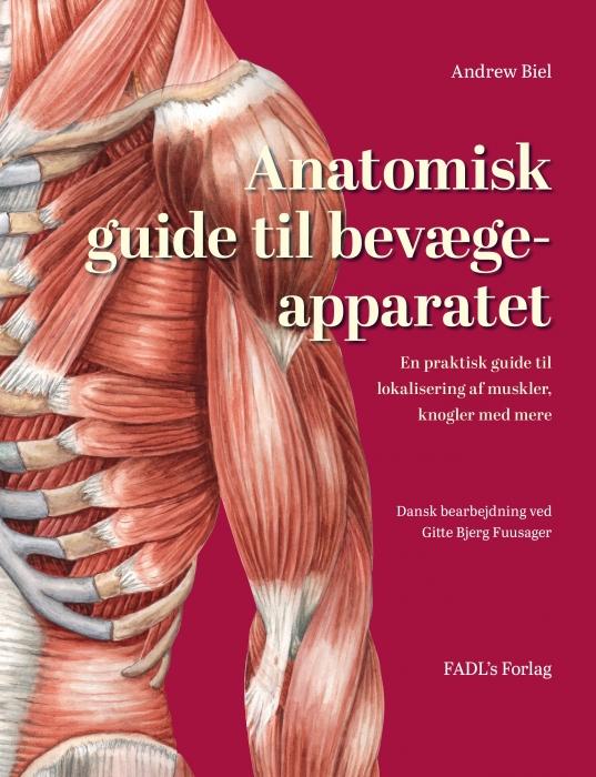Image of Anatomisk guide til bevægeapparatet (Bog)