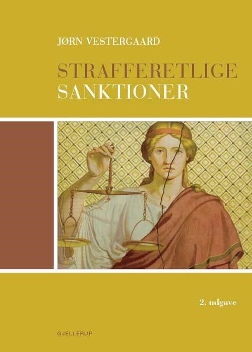 Strafferetlige sanktioner (E-bog)