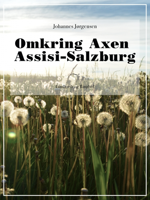 Omkring Axen Assisi-Salzburg (E-bog)