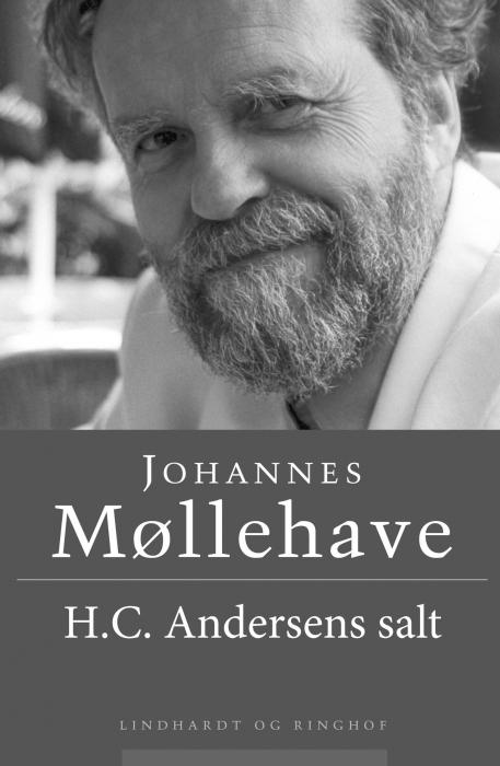 H. C. Andersens salt (Bog)