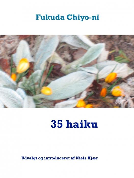 Image of   35 haiku (E-bog)