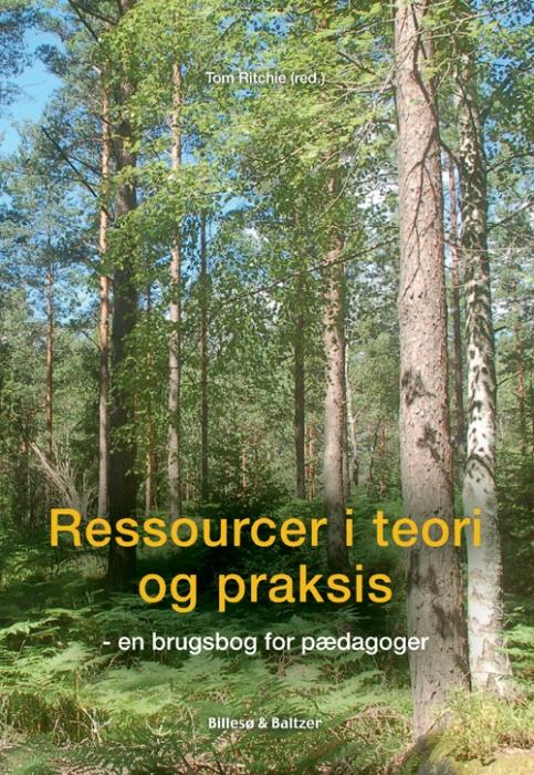 Image of Ressourcer i teori og praksis (E-bog)