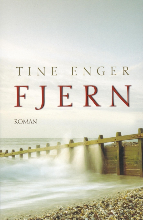 Fjern (E-bog)