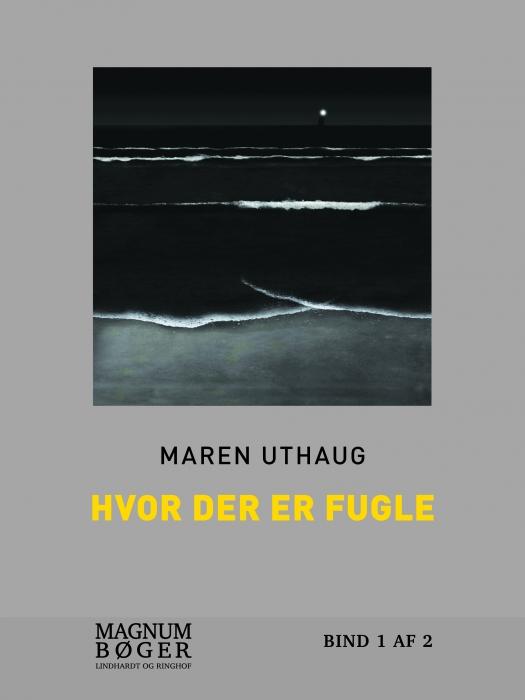 Image of   Hvor der er fugle (storskrift) (Bog)