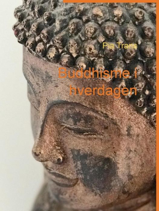 Buddhisme i hverdagen (E-bog)