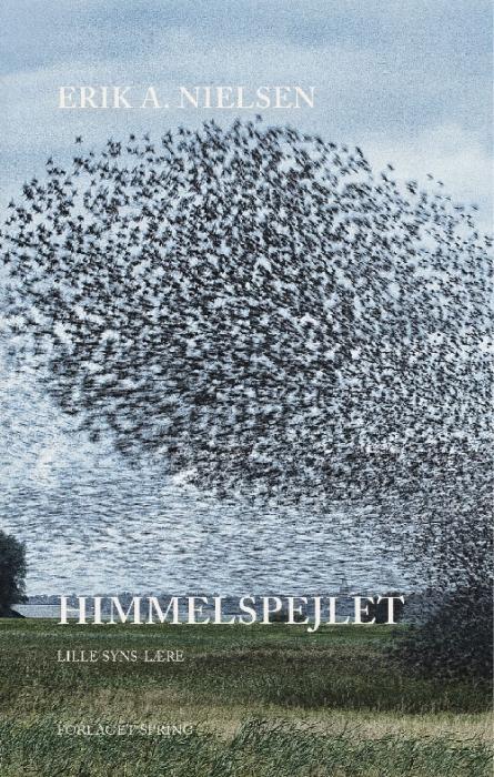 Himmelspejlet (Bog)