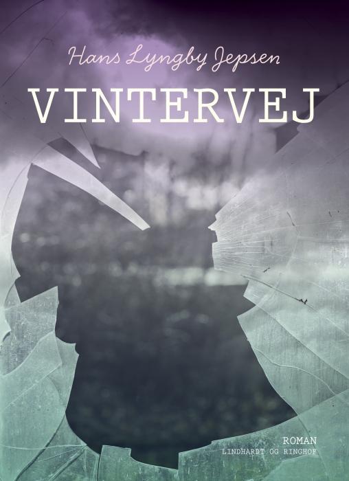 Image of   Vintervej (Bog)