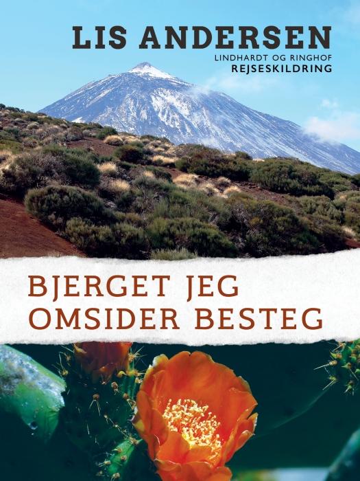 Image of   Bjerget jeg omsider besteg (Bog)