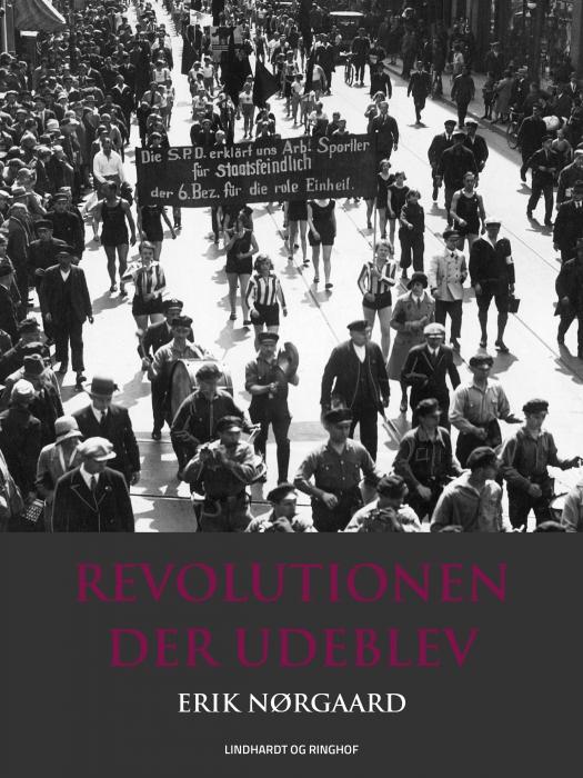 Image of   Revolutionen der udeblev (Bog)