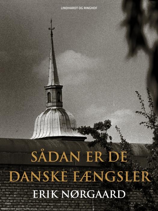 Image of   Sådan er de danske fængsler (Bog)
