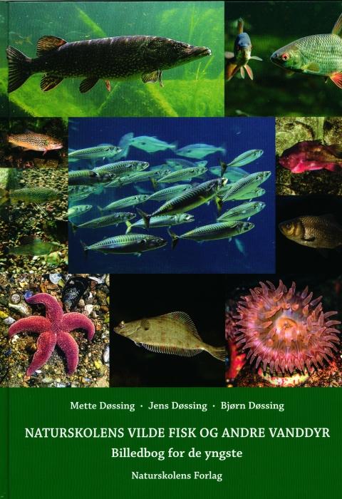 Naturskolens vilde fisk og andre vanddyr (Bog)