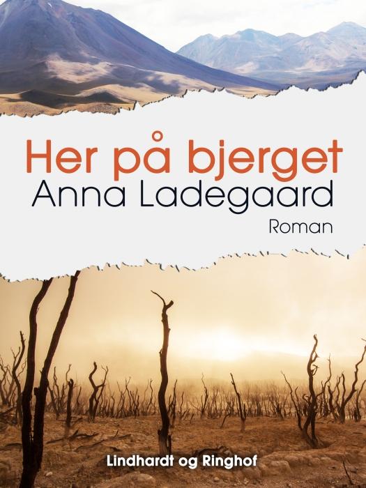 Image of Her på bjerget (Bog)