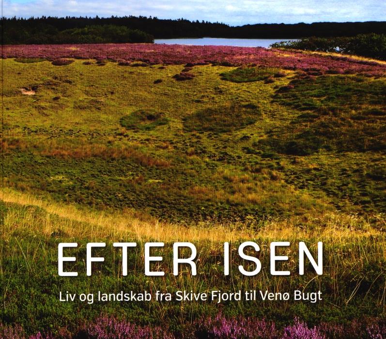 Image of   Efter isen (Bog)