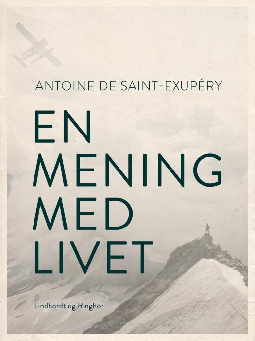 Image of En mening med livet (E-bog)