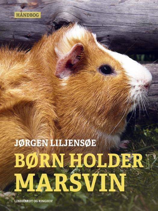 Image of   Børn holder marsvin (E-bog)
