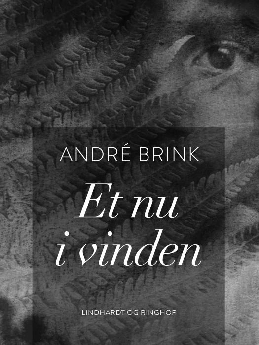 Image of Et nu i vinden (E-bog)