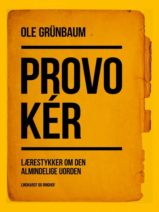 Provokér: Lærestykker om den almindelige uorden (E-bog)