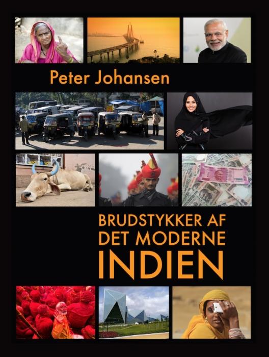 Image of   Brudstykker af det moderne Indien (E-bog)