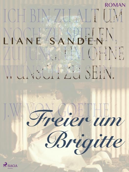 Freier um Brigitte (E-bog)