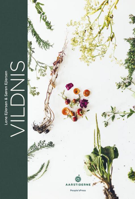 Vildnis (Bog)