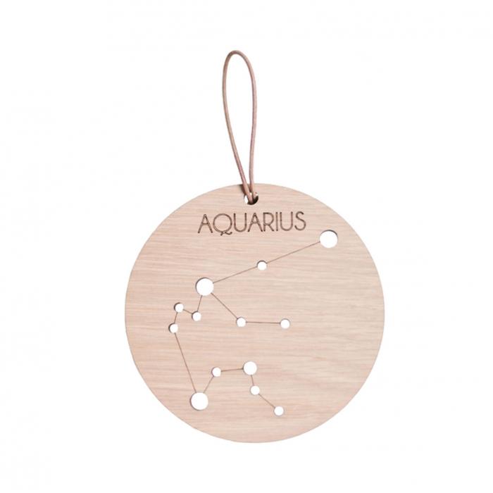 Zodiac Constellation - Aquarius (Bog)