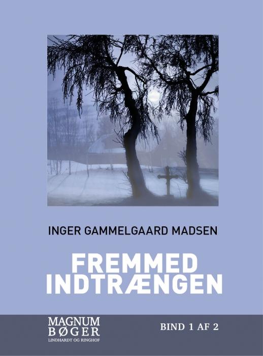 Image of   Fremmed indtrængen (storskrift) (Bog)