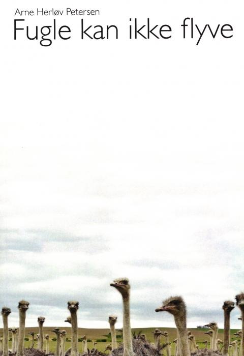 Image of   Fugle kan ikke flyve (Bog)