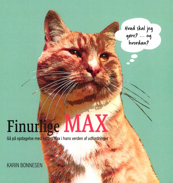Finurlige MAX (Bog)