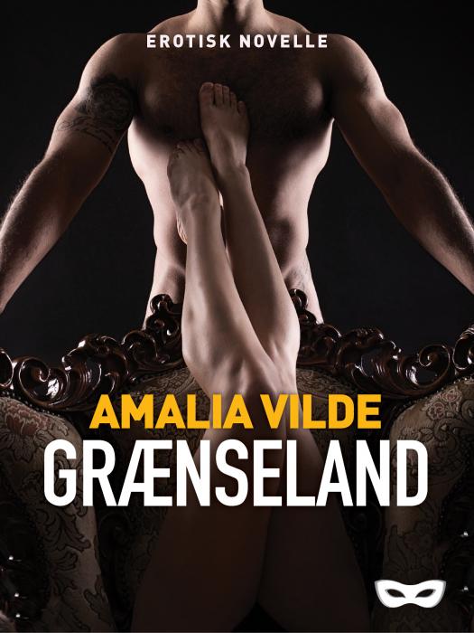 Image of Grænseland (E-bog)
