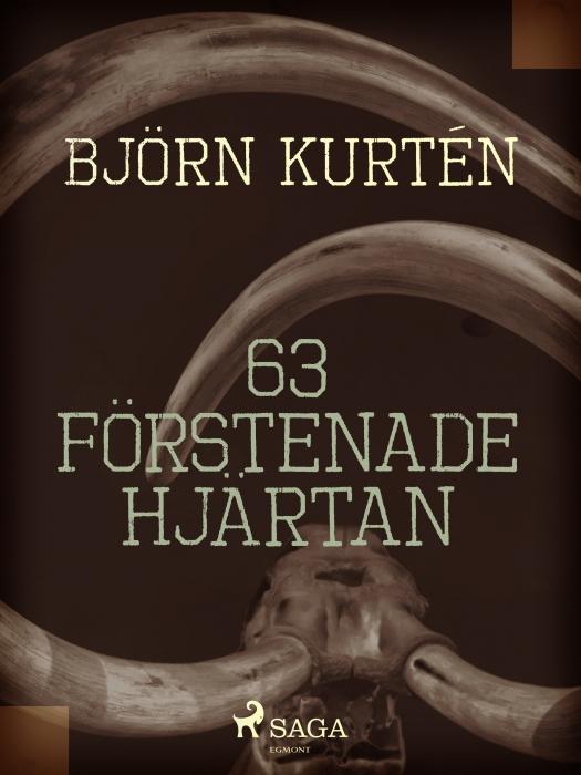 Image of   63 förstenade hjärtan (E-bog)