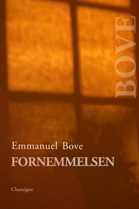Fornemmelsen (E-bog)