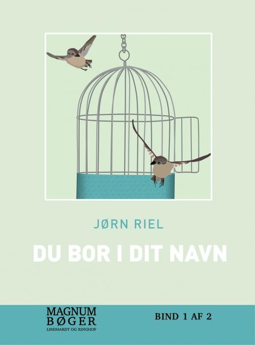 Image of   Du bor i dit navn (storskfrift) (Bog)