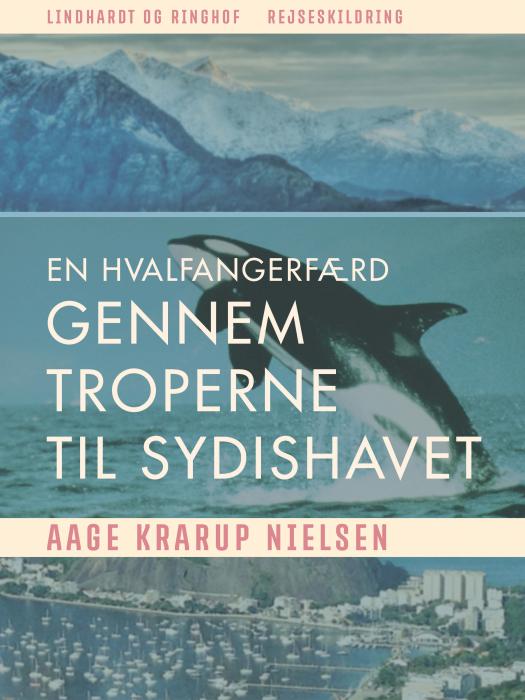 Image of En hvalfangerfærd gennem troperne til sydishavet (E-bog)