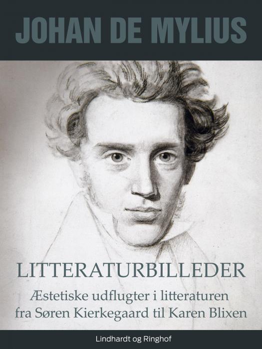 Litteraturbilleder: Æstetiske udflugter i litteraturen fra Søren Kierkegaard til Karen Blixen (Bog)