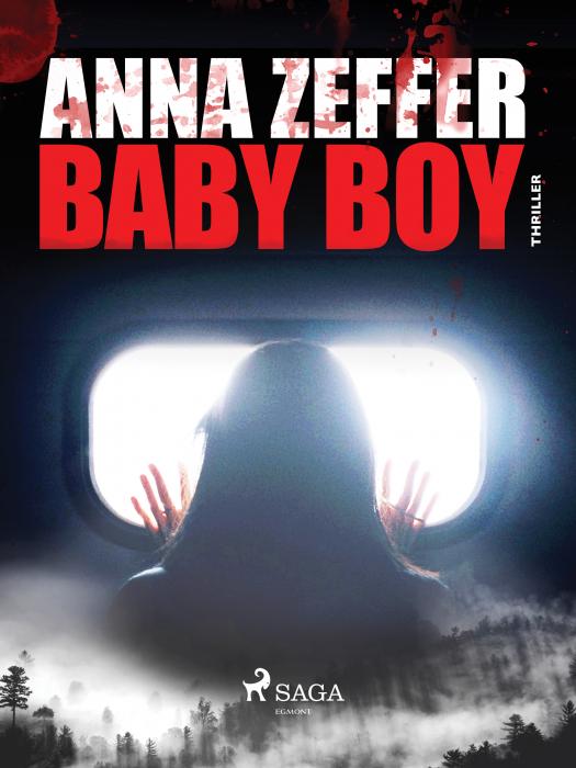 Image of Baby Boy (E-bog)
