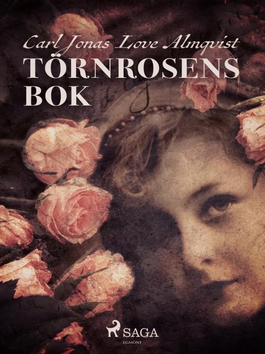 Image of   Törnrosens bok (E-bog)