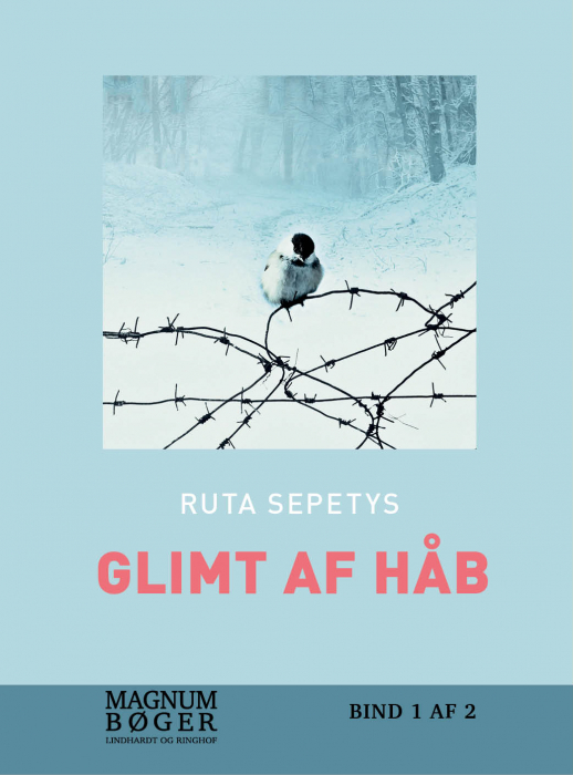Image of   Glimt af håb (storskrift) (Bog)