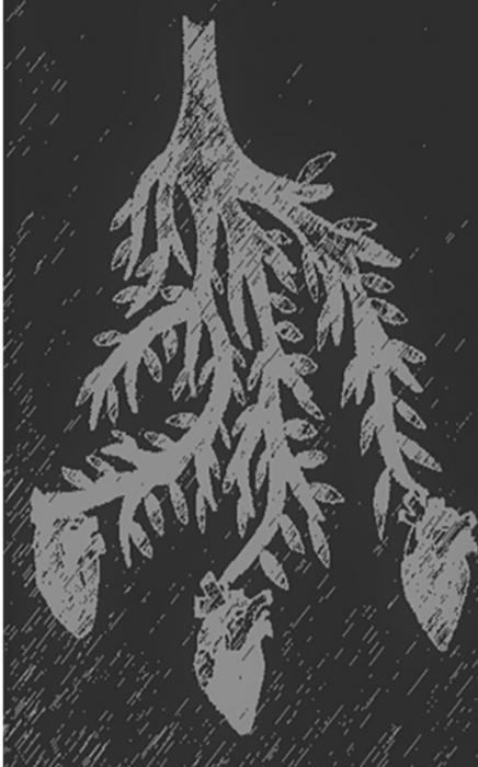 Brudstykker (Bog)