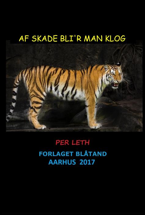 Image of   Af Skade Blir Man Klog (E-bog)