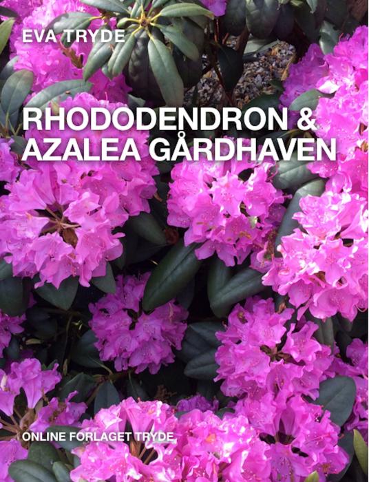 Image of   RHODODENDRON & AZALEA GÅRDHAVEN (E-bog)