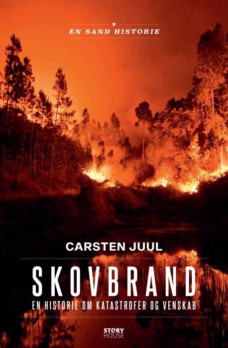 Skovbrand (E-bog)