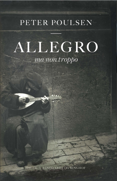Image of   Allegro ma non troppo (Bog)
