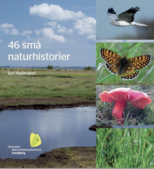 Image of   46 små naturhistorier (Bog)