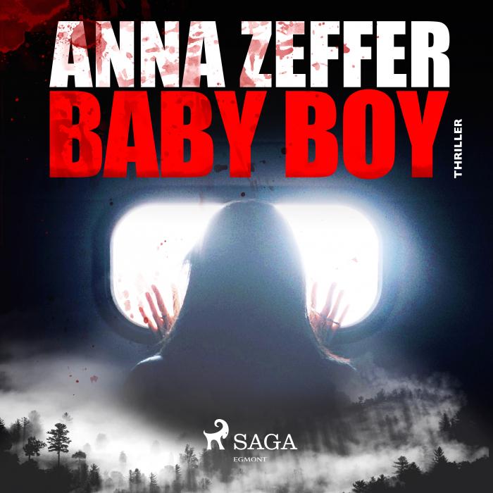 Image of Baby Boy (Lydbog)