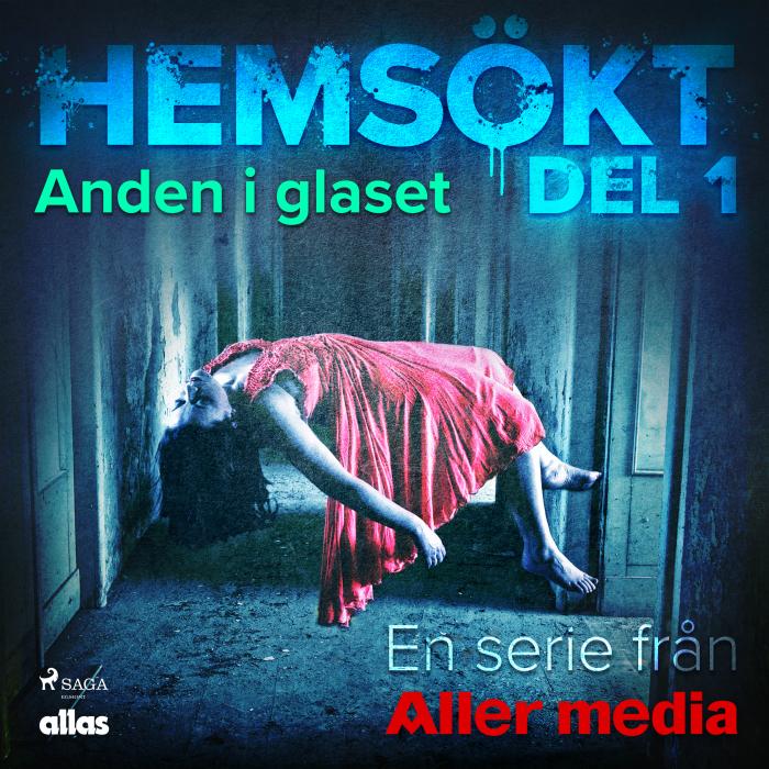 Image of Anden i glaset (Lydbog)