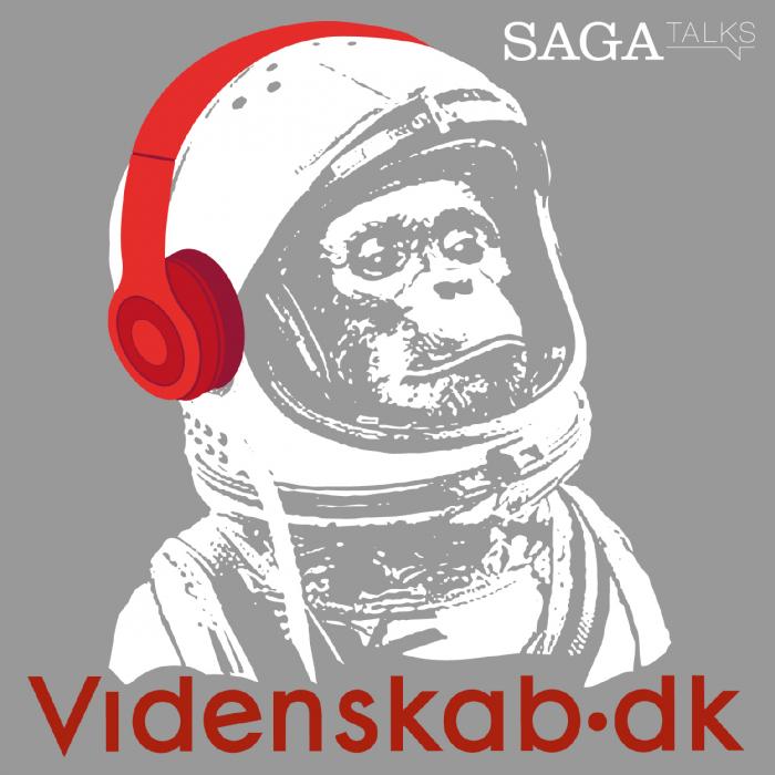 Videnskab.dk #10 - Dansk rumudstyr bidrager til året  astronyhed (Lydbog)
