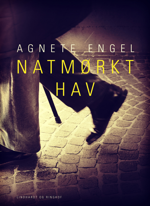 Image of Natmørkt hav (E-bog)