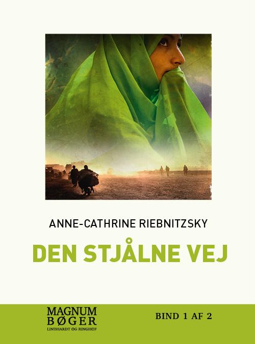 Image of   Den stjålne vej (storskrift) (Bog)