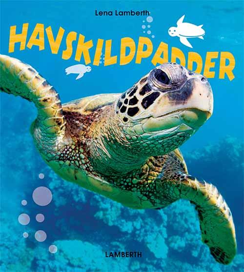 Havskildpadder (Bog)