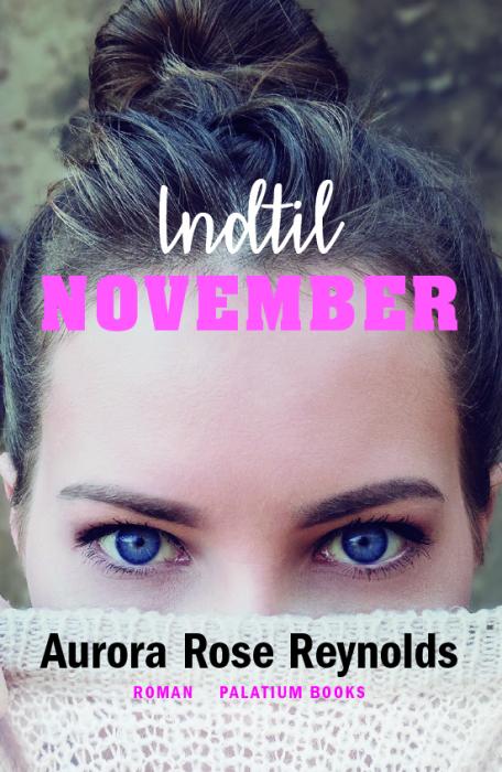 Image of Indtil November (E-bog)